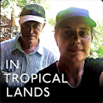 In Tropical Lands by Farne Sinclair